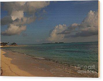 Bahama Ocean View Wood Print by Nancie DeMellia