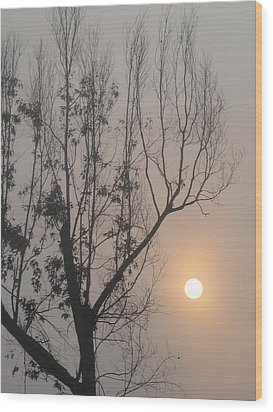 Wood Print featuring the photograph Balance by Lyn Calahorrano