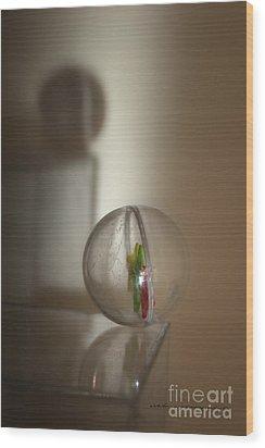 Balance Wood Print by Vicki Ferrari Photography