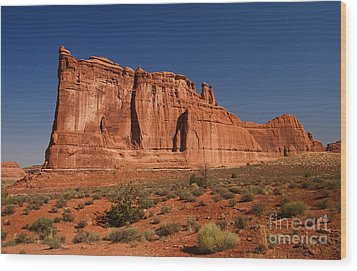 Balanced Rock Arches Np Wood Print by ELITE IMAGE photography By Chad McDermott