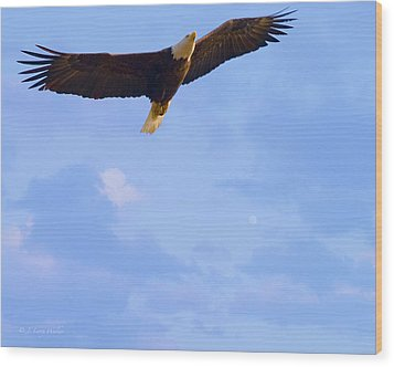 Bald Eagle - The Grand Master 2 Wood Print