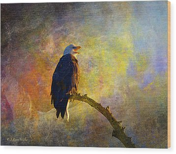 Bald Eagle Awaiting Sunrise Wood Print