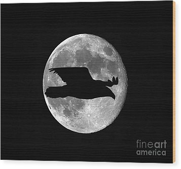 Bald Eagle Moon Wood Print by Al Powell Photography USA