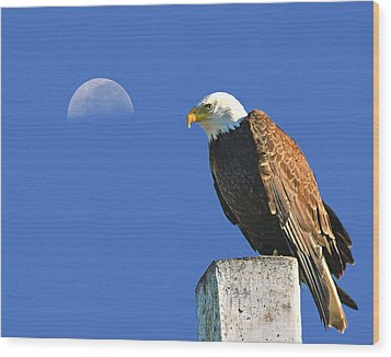 Bald Eagle With The Moon Wood Print