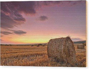 Bales At Twilight Wood Print by Evgeni Dinev
