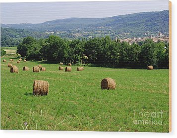 Bales Of Hay Wood Print by Andrea Simon