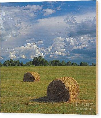 Bales Of Hay Wood Print by Elena Filatova