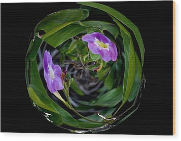 Ball Of Foliage Wood Print