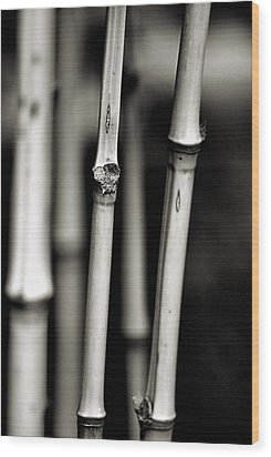 Bamboo Wood Print by Bob Wall