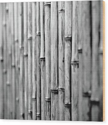 Bamboo Fence Wood Print by George Imrie Photography