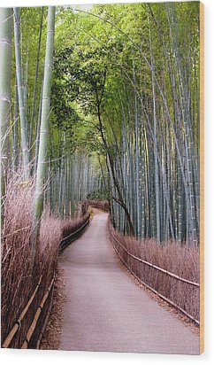 Bamboo Grove Wood Print by Shadie Chahine