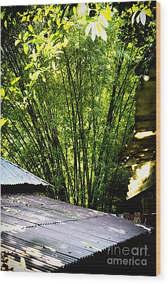 Wood Print featuring the photograph Bamboo Shade by Thanh Tran