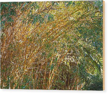 Bamboo Stand Please Buy Me Wood Print by Michael Clarke JP