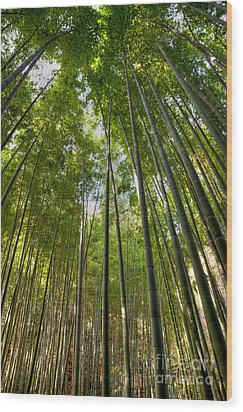Bamboo Wood Print by Tad Kanazaki