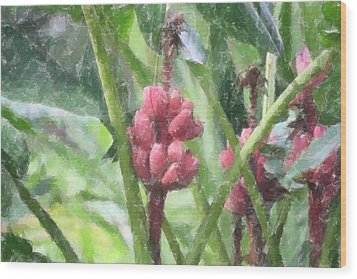 Banana Plant Wood Print by Donna  Smith