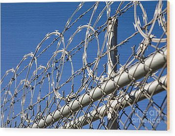 Barbed Wire And Chain Link Fence Wood Print by Paul Edmondson