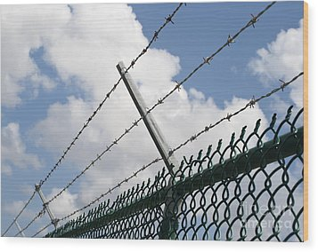 Barbed Wire Wood Print by Blink Images