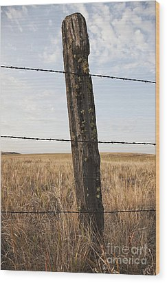 Barbed Wire Fencing And Wooden Post Wood Print by Jetta Productions, Inc