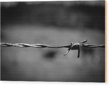 Barbed Wire Wood Print by Raimonds Raginskis