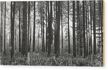 Barcode Wood Print