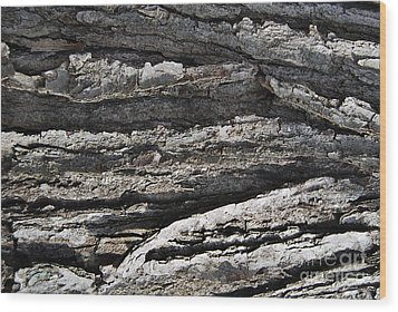 Wood Print featuring the photograph Bark by Alexandra Jordankova