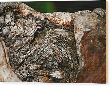 Bark Wood Print by Christopher Gaston