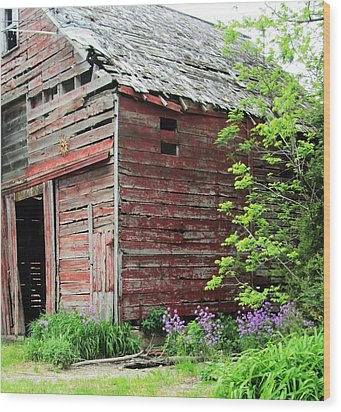 Barn-10 Wood Print by Todd Sherlock