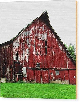 Barn-26 Wood Print by Todd Sherlock