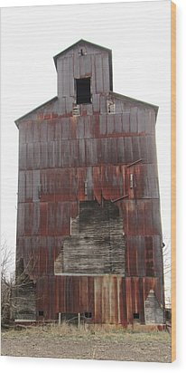Barn 34 Wood Print by Todd Sherlock