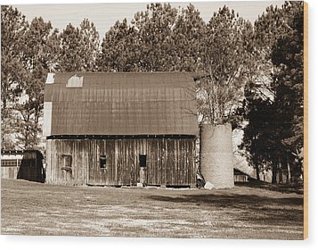 Barn And Silo 1 Wood Print by Douglas Barnett