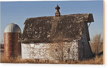 Barn And Silo Wood Print by Edward Peterson
