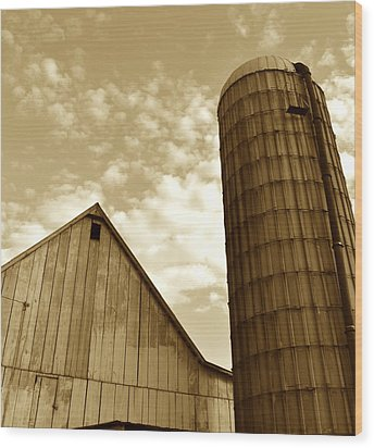 Barn And Silo In Sepia Wood Print