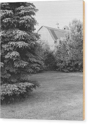 Barn Finial Wood Print by Jan W Faul