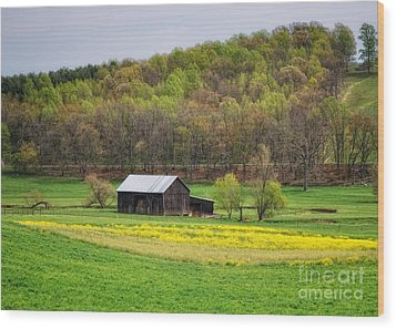 Barn In The Hollar Wood Print by Pamela Baker
