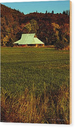 Wood Print featuring the photograph Barn In The Style Of The 60s by Mick Anderson