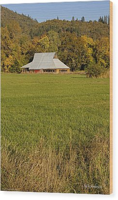 Wood Print featuring the photograph Barn Near Murphy by Mick Anderson