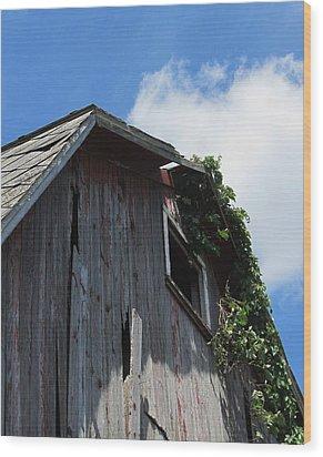 Barn-nine Wood Print by Todd Sherlock
