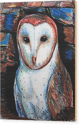 Barn Owl  Wood Print by Jon Baldwin  Art