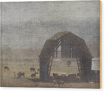 Barn Remnants Wood Print by Cindy Wright