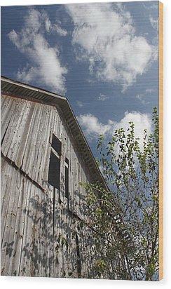 Barn To Be Wild Wood Print