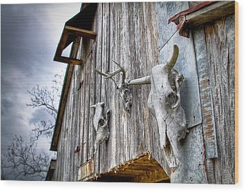 Barnstorm Wood Print by Pixel Perfect by Michael Moore