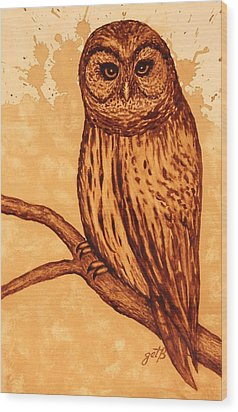 Barred Owl Coffee Painting Wood Print by Georgeta  Blanaru