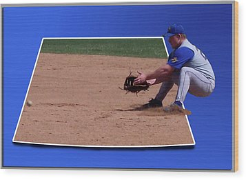 Baseball Hot Grounder Wood Print by Thomas Woolworth