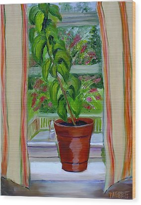 Basil In My Window Wood Print by Phebe Smith