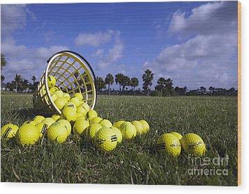 Basket Of Golf Balls Wood Print by Skip Nall