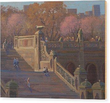 Bathesda Stairway Central Park Wood Print by Marianne Kuhn