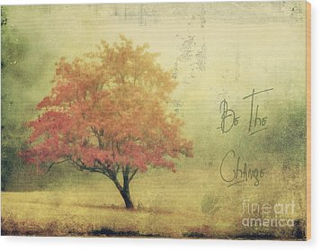 Be The Change Wood Print by Darren Fisher