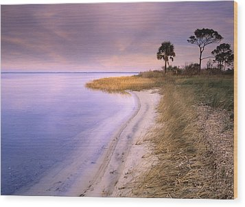 Beach Along Saint Josephs Bay Florida Wood Print by Tim Fitzharris