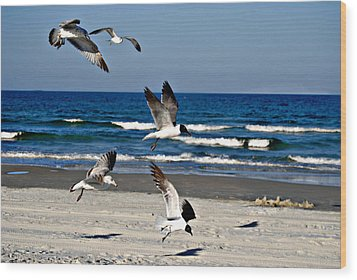 Beach Birds In Play Wood Print by Nicole Hutchison