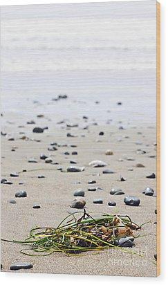 Beach Detail On Pacific Ocean Coast Of Canada Wood Print by Elena Elisseeva